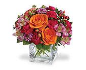Redmond Flowers - Vibrant Blooms - Ballard Blossom, Inc.