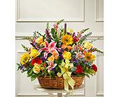 Bright Flower Sympathy Basket in Richmond, Virginia, Flowerama
