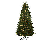 7.5 Instant Oregon Fir Tree in San Antonio TX, Best Wholesale Christmas Co