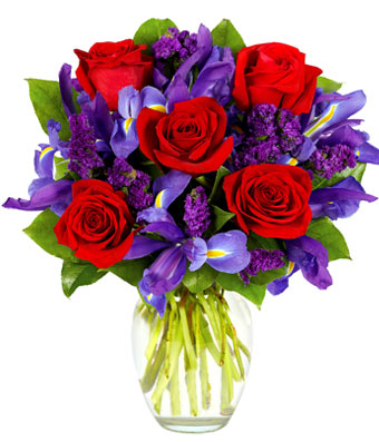 RED ROSES AND IRIS BOUQUET in Vienna VA, Vienna Florist & Gifts