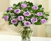 12 Premium Long Stem Purple Roses in Los Angeles CA, 1-800 Flowers Conroys
