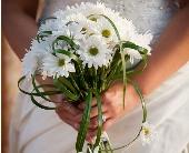 Sweet Daisy Bouquet in El Paso, Texas, Debbie's Bloomers