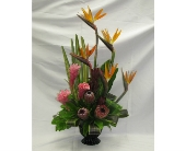 Tropical Galore in Kitchener, Ontario, Camerons Flower Shop