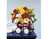 It's A Girl Wagon in Charlotte NC, Starclaire House Of Flowers Florist
