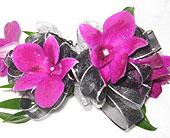 Purple Orchids in Katy, Texas, Kay-Tee Florist on Mason Road