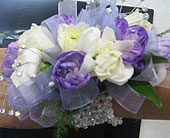 Carnation of Purple in Katy TX, Kay-Tee Florist on Mason Road