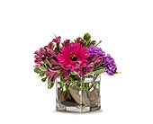 Simply Purple in Freehold NJ, Especially For You Florist & Gift Shop