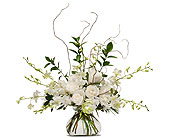 White Elegance in Methuen MA, Martins Flowers & Gifts
