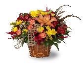 Montville Flowers - Autumn Vines - Petals Of Pine Brook