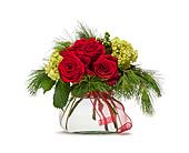 Fort Pierce Flowers - Seasons Greetings - Giordano's Floral Creations