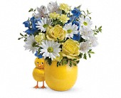 Teleflora's Sweet Peep Bouquet - Baby Blue in Edmonton AB, Petals For Less Ltd.