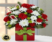 FTD-Holiday Cheer in Woodbridge VA, Lake Ridge Florist