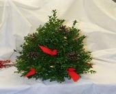 Boxwood Tree in Lewiston ME, Roak The Florist