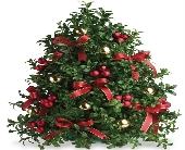 Deck The Halls Boxwood Tree in Big Rapids, Cadillac, Reed City and Canadian Lakes MI, Patterson's Flowers, Inc.