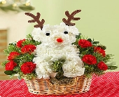 1 800 Santa's Best Reindeer in Woodbridge VA, Lake Ridge Florist