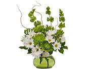 Madison Flowers - Dots and Daisies - George's Flowers, Inc.