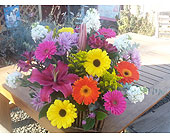 Color Blast Sympathy Basket in Templeton CA, Adelaide Floral
