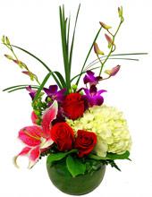 Wheaton Flowers - Grace - Amlings Flowerland
