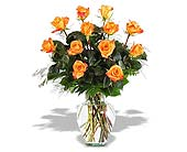 Orange Roses in St. Louis MO, Walter Knoll Florist