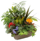 Garden Retreat Planter in Ceramic  in Grimsby, Ontario, Cole's Florist Inc.
