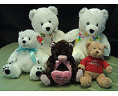 Add a Plush Bear or Tasty Chocolates to Your Order in Greensboro NC, Send Your Love Florist & Gifts