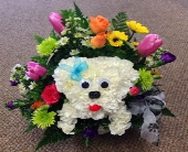 How Much Is That Maltese In The Basket in Frankfort IL, The Flower Cottage