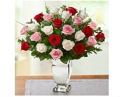 Valentine Rose Medley� Premium Long Stem Roses in Watertown CT, Agnew Florist