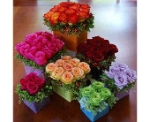 Madison Flowers - Roses  - A Daisy A Day Flowers & Gifts, Inc.