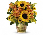 Teleflora's Grand Sunshine Bouquet in Herndon VA, Bundle of Roses