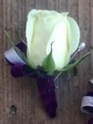 White Rose Bout with Purple Wrap Trim in Clearwater, Florida, Hassell Florist