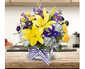 Touched By Sunshine in Dallas TX, In Bloom Flowers, Gifts and More
