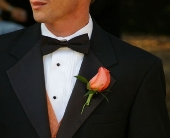 Rose Boutonniere in Seattle WA, Topper's European Floral Design