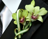Cymbidium Boutonniere in Seattle WA, Topper's European Floral Design