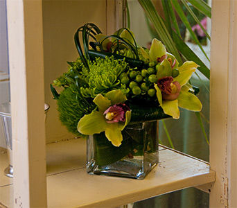 Gracious Green in Monroe CT, Irene's Flower Shop