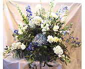 Blue and White Dreams in Kalamazoo MI, Ambati Flowers