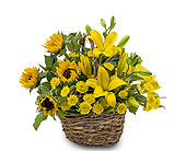 Basket of Sunshine in San Angelo TX, Shirley's Floral Company