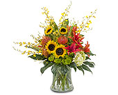 Harvest Wisp in Prospect KY, Country Garden Florist