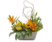 That�s Really Cool in South Surrey BC, EH Florist Inc