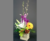 Orchids & Burlap in Batavia IL, Batavia Floral in Bloom, Inc