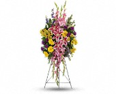 Rainbow Of Remembrance Spray in Largo, Florida, Rose Garden Flowers & Gifts, Inc