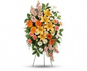 Treasured Lilies Spray in Bound Brook NJ, America's Florist & Gifts