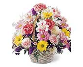 For Mom in Norwood PA, Norwood Florists