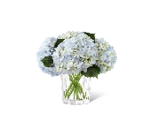 Hydrangea Bouquet in Chicago, Illinois, La Salle Flowers