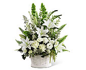FTD In Our Thoughts in Ajax ON, Reed's Florist Ltd
