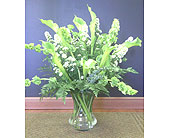 Faithful Calla Lilies in Charlotte NC, Starclaire House Of Flowers Florist
