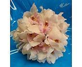 White Cymbidium Bouquet in Kihei, Hawaii, Kihei-Wailea Flowers By Cora