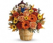 Teleflora's Harvest Cheer Bouquet in Edmonton AB, Petals For Less Ltd.