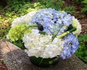 Hydrangea Medley in Guilford CT, Guilford White House Florist