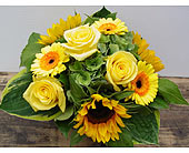 Mellow Yellow in North Vancouver BC, Special Moments Flowers And Gifts
