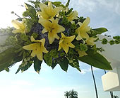 Arch Arrangement - Safety Harbor Spa in Silvermill Plaza, Florida, Buds, Blooms & Beyond